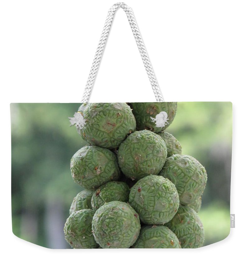 Green Weekender Tote Bag featuring the photograph Seedlings by Michele Nelson