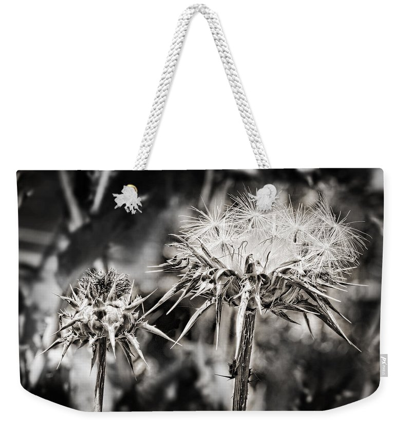 Seeds Weekender Tote Bag featuring the photograph Seedy Neighborhood In Bw by Kelley King