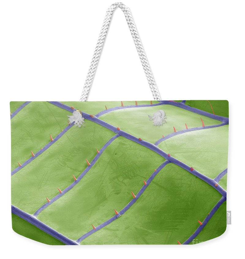 Colored Sem Weekender Tote Bag featuring the photograph Sem Of Dragonfly Wing by Ted Kinsman