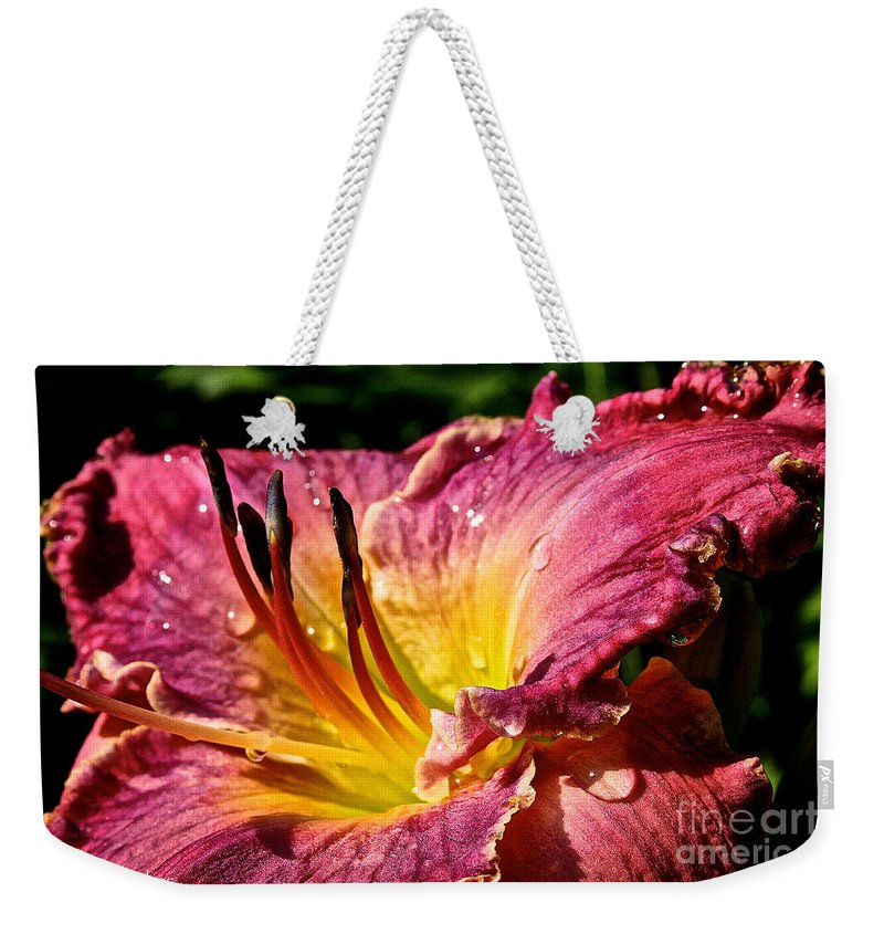 Plant Weekender Tote Bag featuring the photograph Seven Seals Daylily by Susan Herber