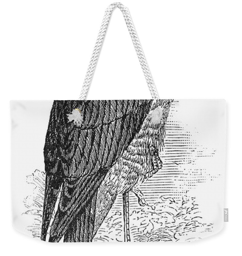 19th Century Weekender Tote Bag featuring the photograph Sharp-shinned Hawk by Granger