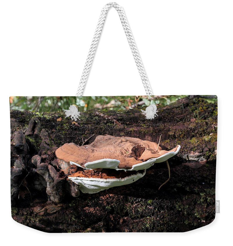 Doug Lloyd Weekender Tote Bag featuring the photograph Shelf Mushrooms by Doug Lloyd