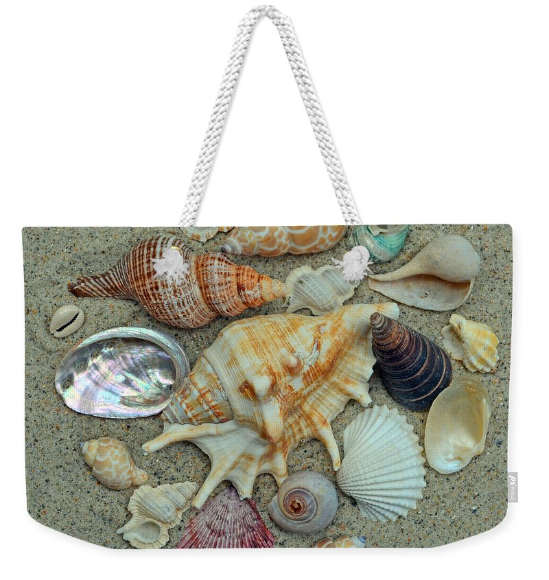 Shells Weekender Tote Bag featuring the photograph Shell Collection 2 by Sandi OReilly
