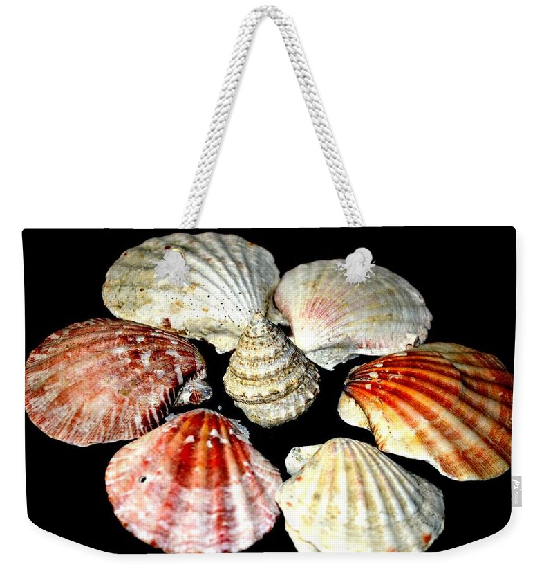 Shell Weekender Tote Bag featuring the photograph Shell Flower by Maria Urso