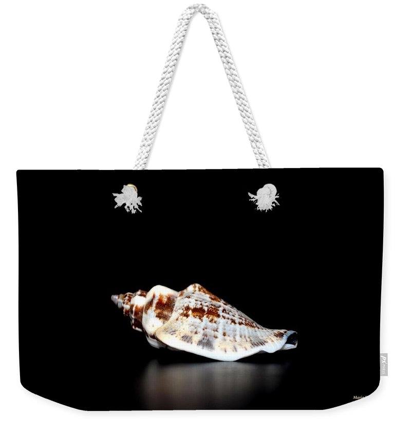 Shell On Leather 2 Weekender Tote Bag featuring the photograph Shell On Leather 2 by Maria Urso