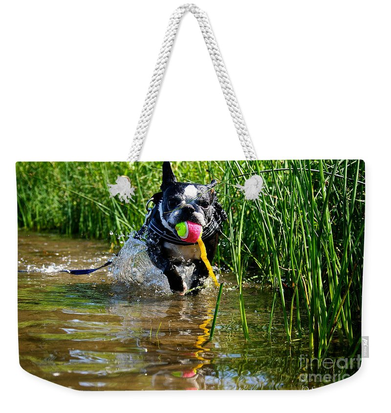 Pet Weekender Tote Bag featuring the photograph Shoreline Conditioning by Susan Herber