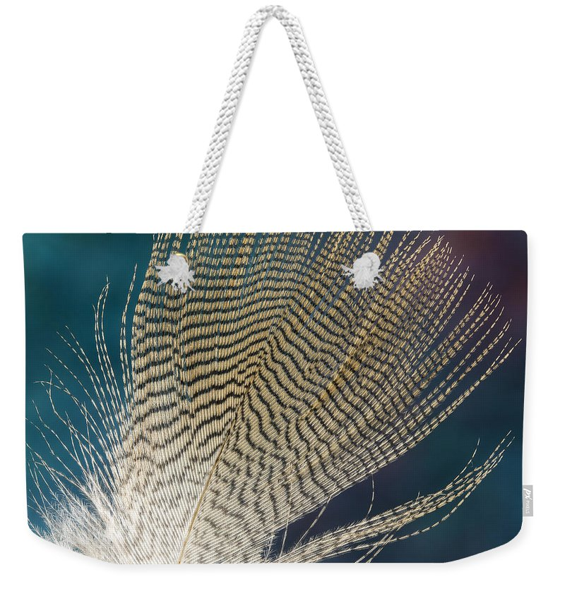 Feather Weekender Tote Bag featuring the photograph Wood Duck Feather by Jean Noren
