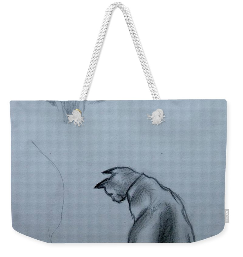 Cat Weekender Tote Bag featuring the painting Siamese Cat Study by Caroline Street
