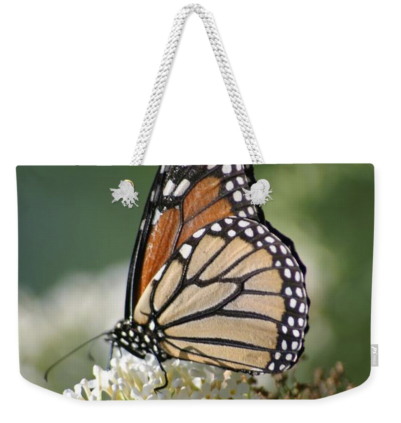 Butterfly Weekender Tote Bag featuring the photograph Side Profile Of A Monarch by Living Color Photography Lorraine Lynch