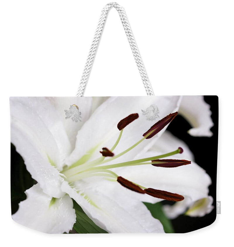 Lily Weekender Tote Bag featuring the photograph Side View Of A Lily 3 by Angela Rath