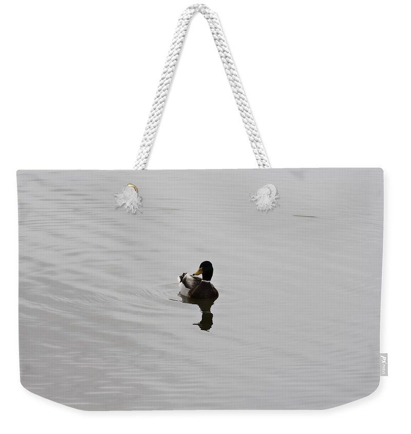 Duck On Lake Weekender Tote Bag featuring the photograph Silent Waters by Douglas Barnard