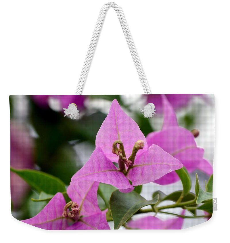 Simplicity Weekender Tote Bag featuring the photograph Simplicity by Maria Urso