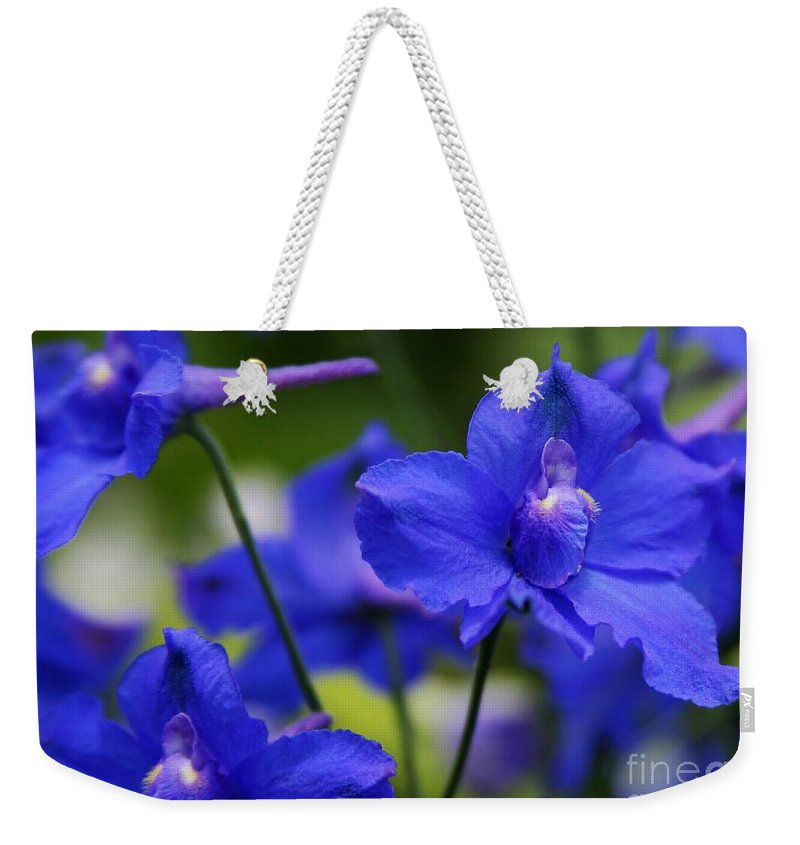 Blue Weekender Tote Bag featuring the photograph Singing The Blues by Sabrina L Ryan