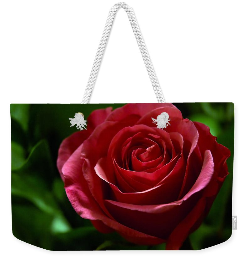 Red Weekender Tote Bag featuring the photograph Single Red Rose by Marie Hicks