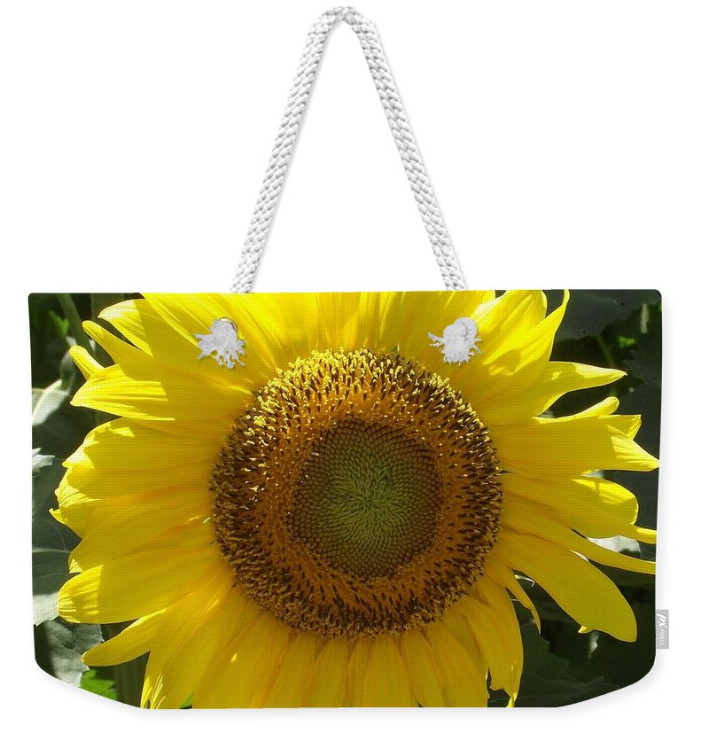 Yellow Sunflower Weekender Tote Bag featuring the photograph Single Sunflower by Michelle Welles