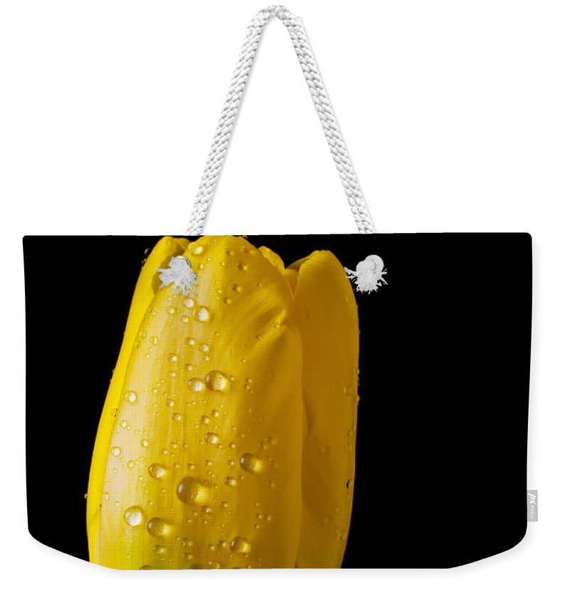 Single Yellow Weekender Tote Bag featuring the photograph Single Yellow Tulip by Garry Gay