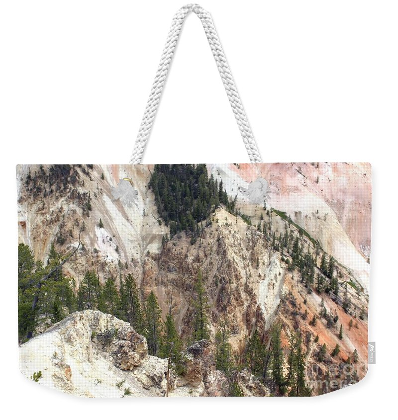 Grand Canyon Weekender Tote Bag featuring the photograph Sit For A Spell At Grand Canyon In Yellowstone by Living Color Photography Lorraine Lynch