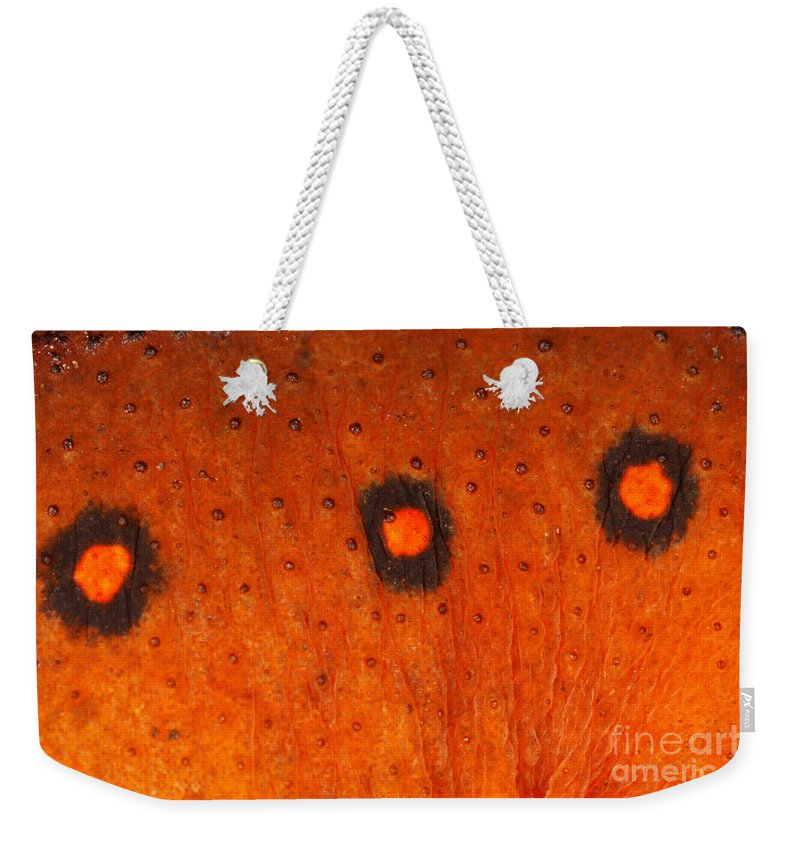 Skin Weekender Tote Bag featuring the photograph Skin Of Eastern Newt by Ted Kinsman