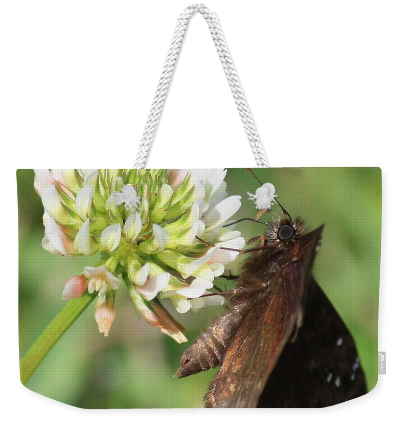 Nature Weekender Tote Bag featuring the photograph Skipper On Clover Square by Carol Groenen