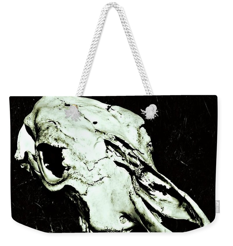 Skull Weekender Tote Bag featuring the photograph Skull by Brigette Hollenbeck