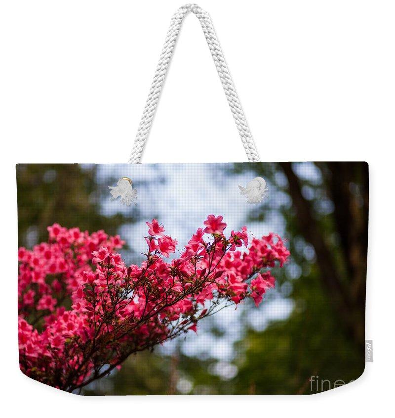 Rhodies Weekender Tote Bag featuring the photograph Skylit Blooms by Mike Reid