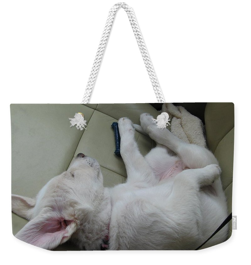 Labrador Weekender Tote Bag featuring the photograph Sleeping In The Front Seat by Amy Hosp