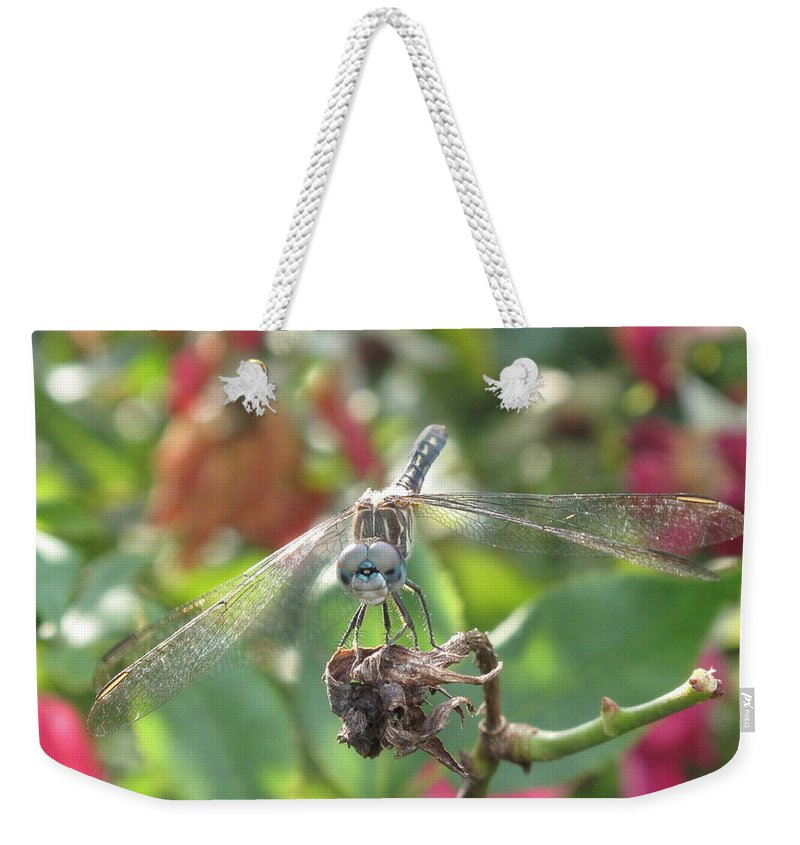 Weekender Tote Bag featuring the photograph Smile by Michele Nelson
