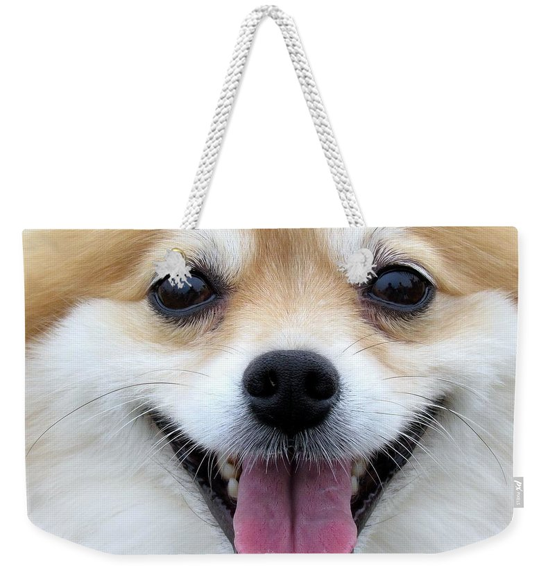 Dog Weekender Tote Bag featuring the photograph Smiley Zoey by Lori Pessin Lafargue