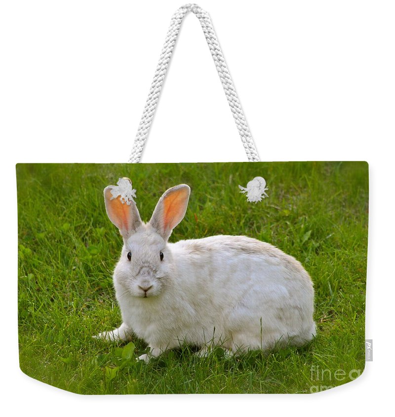 Rabbit Weekender Tote Bag featuring the photograph Snow Ball by Rick Monyahan