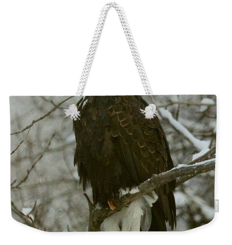 Eagle Weekender Tote Bag featuring the photograph Snow Eagle by Myrna Bradshaw