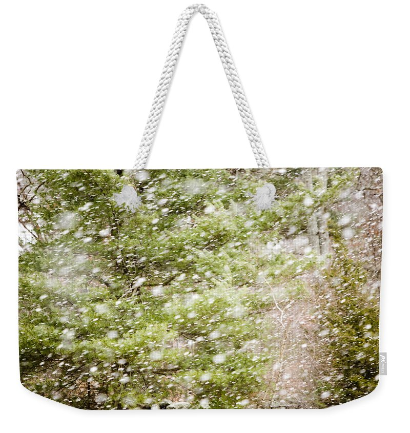 Snow Weekender Tote Bag featuring the photograph Snow Falling In Front Of Pines by Tim Laman