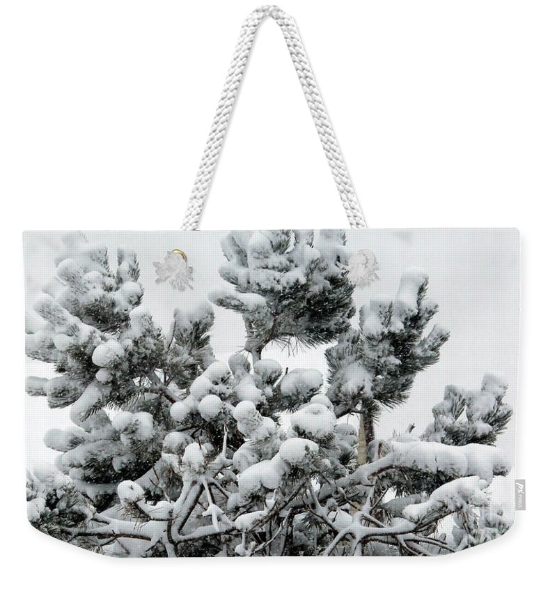 Snow Weekender Tote Bag featuring the photograph Snow On The Pines by Barbara Griffin