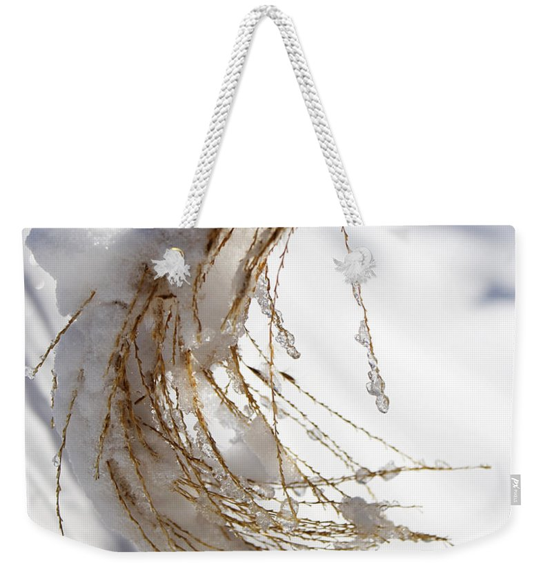 Snow Weekender Tote Bag featuring the photograph Snowy Fountain Grass by Jeff Galbraith