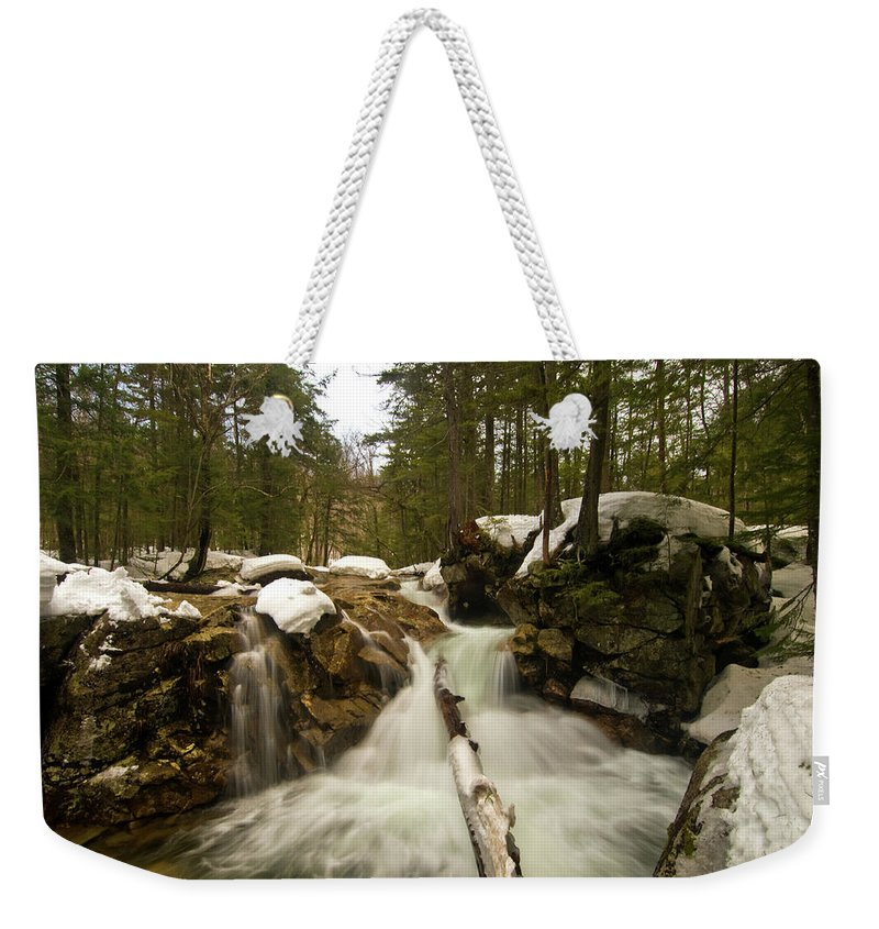 white Mountains Of New Hampshire Weekender Tote Bag featuring the photograph Snowy Veil by Paul Mangold