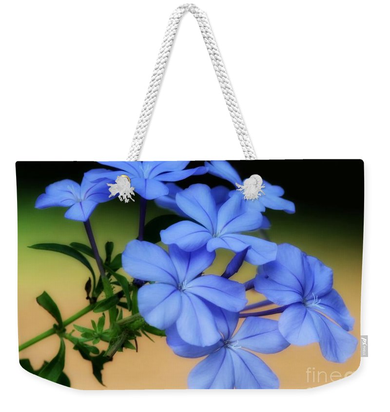 Blue Weekender Tote Bag featuring the photograph Soft Blue Plumbago by Sabrina L Ryan