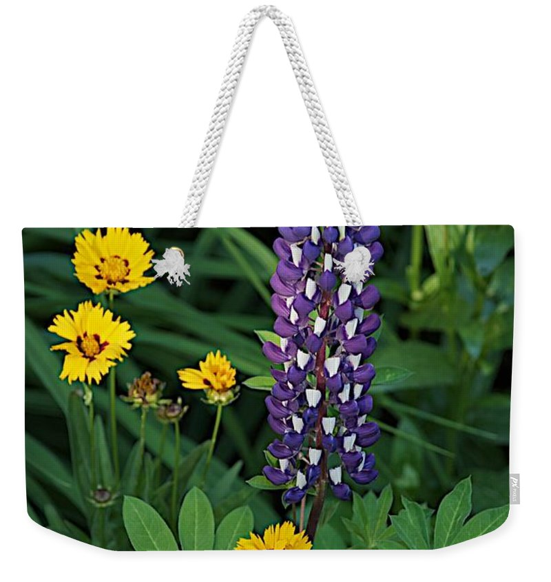 Flower Weekender Tote Bag featuring the photograph Solitary by Joseph Yarbrough
