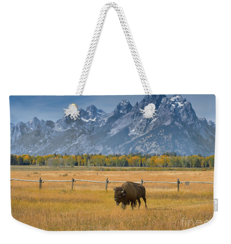 Grand Teton Weekender Tote Bag featuring the photograph Solitary Moments by Sandra Bronstein