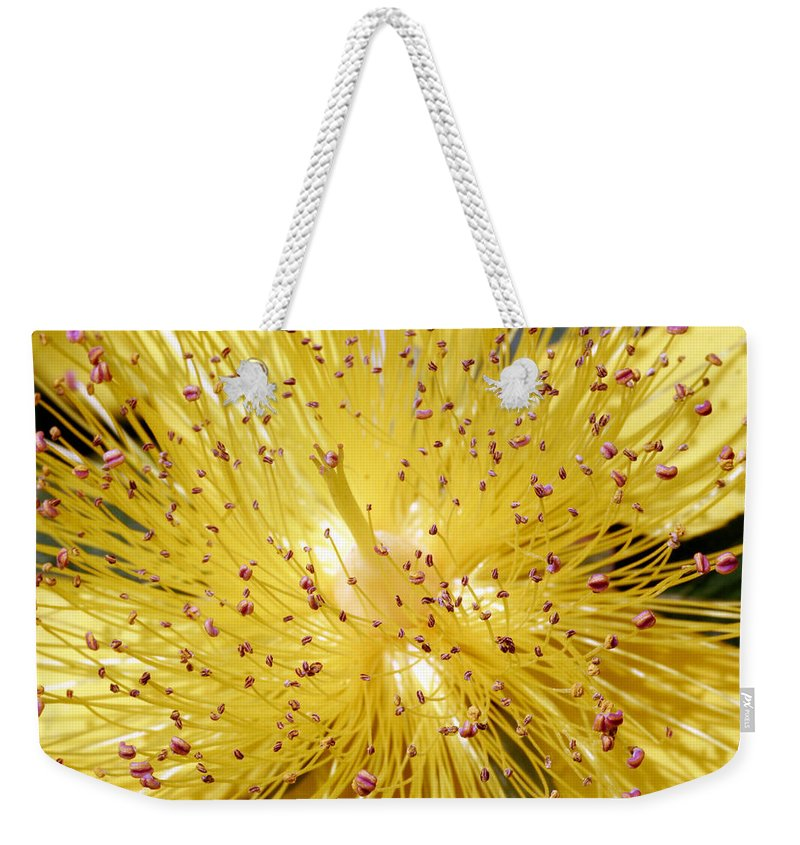 Flowers Weekender Tote Bag featuring the photograph Sons Of Light by Munir Alawi