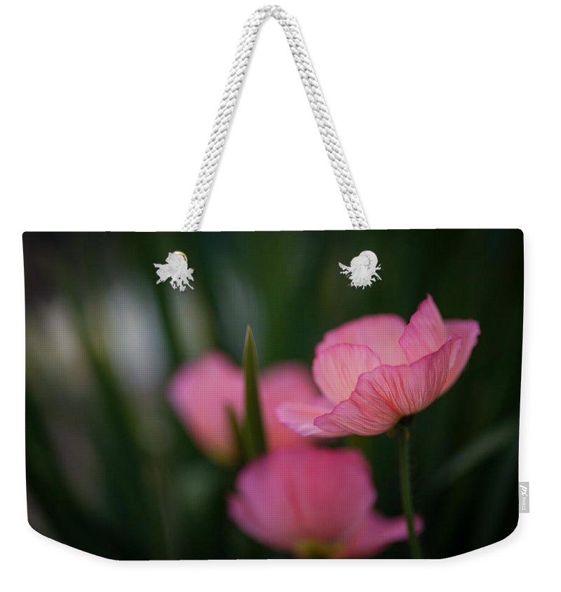Poppy Weekender Tote Bag featuring the photograph Sordid Poppies by Mike Reid
