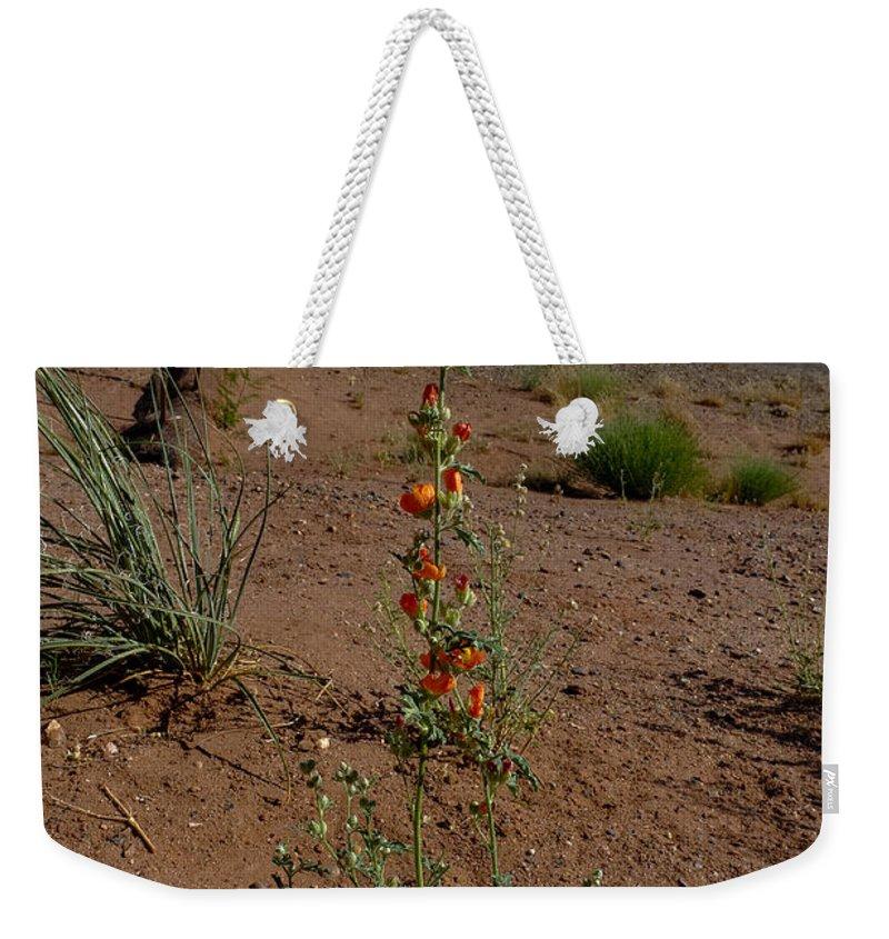 Flower Weekender Tote Bag featuring the photograph Southwest Wildflower by Julie Niemela