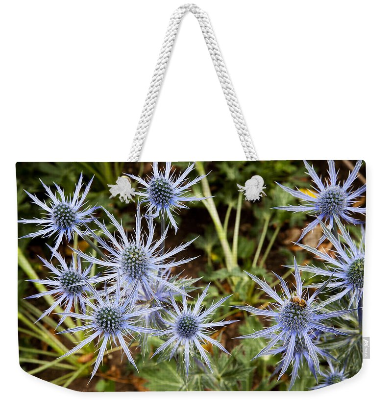 Blue Flowers Weekender Tote Bag featuring the photograph Spectacular by Kelley King