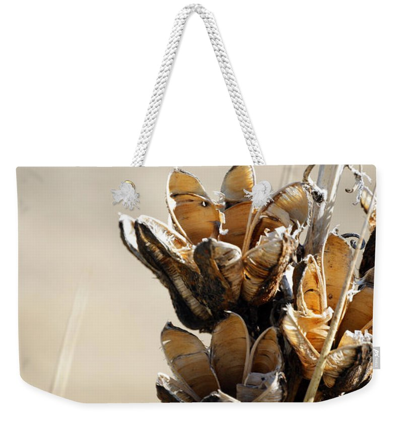 Flowers Weekender Tote Bag featuring the photograph Spent by Ernie Echols