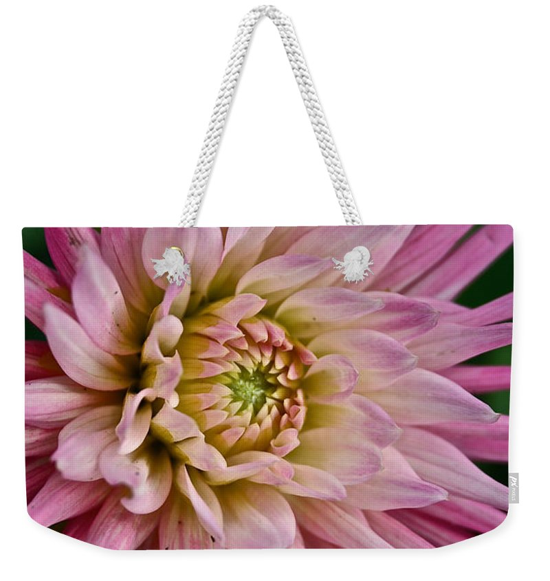 Outdoors Weekender Tote Bag featuring the photograph Spiked Dahlia by Susan Herber