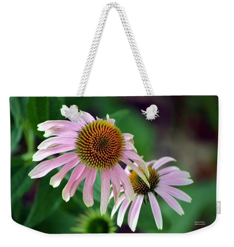 Spiraling Weekender Tote Bag featuring the photograph Spiraling Spikes by Maria Urso