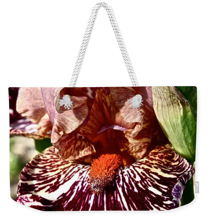 Plant Weekender Tote Bag featuring the photograph Splattered Iris by Susan Herber