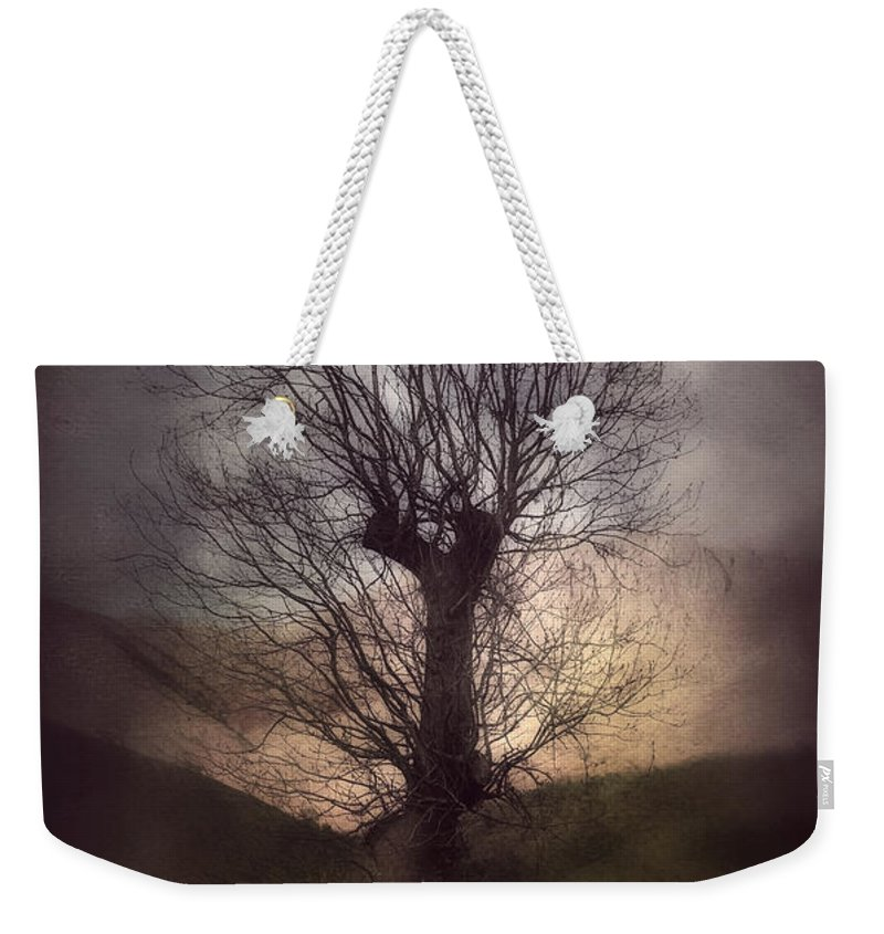 Art Weekender Tote Bag featuring the photograph Spook-tree by Svetlana Sewell