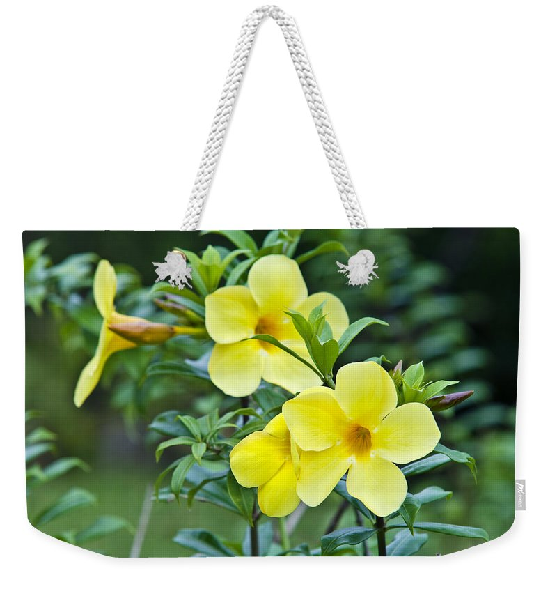 Photography Weekender Tote Bag featuring the photograph Spreading Petals On Tall Stemmed Bright by Jason Edwards