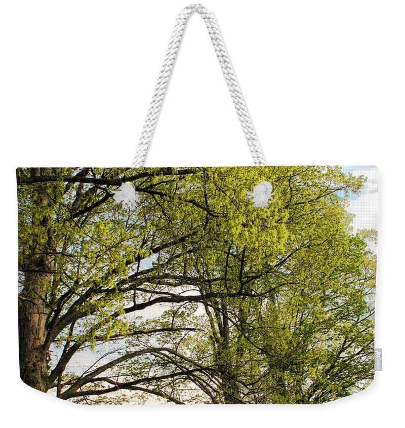 Spring Weekender Tote Bag featuring the photograph Spring Awaits by Joan Minchak