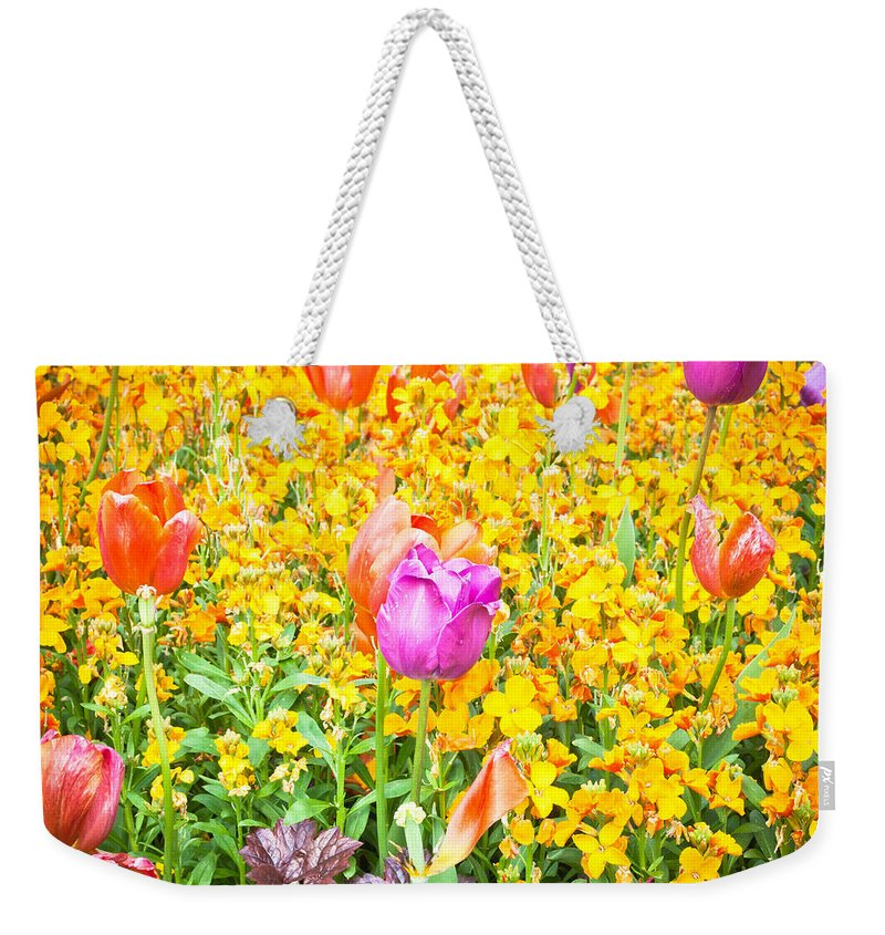 Background Weekender Tote Bag featuring the photograph Spring Flowers by Tom Gowanlock