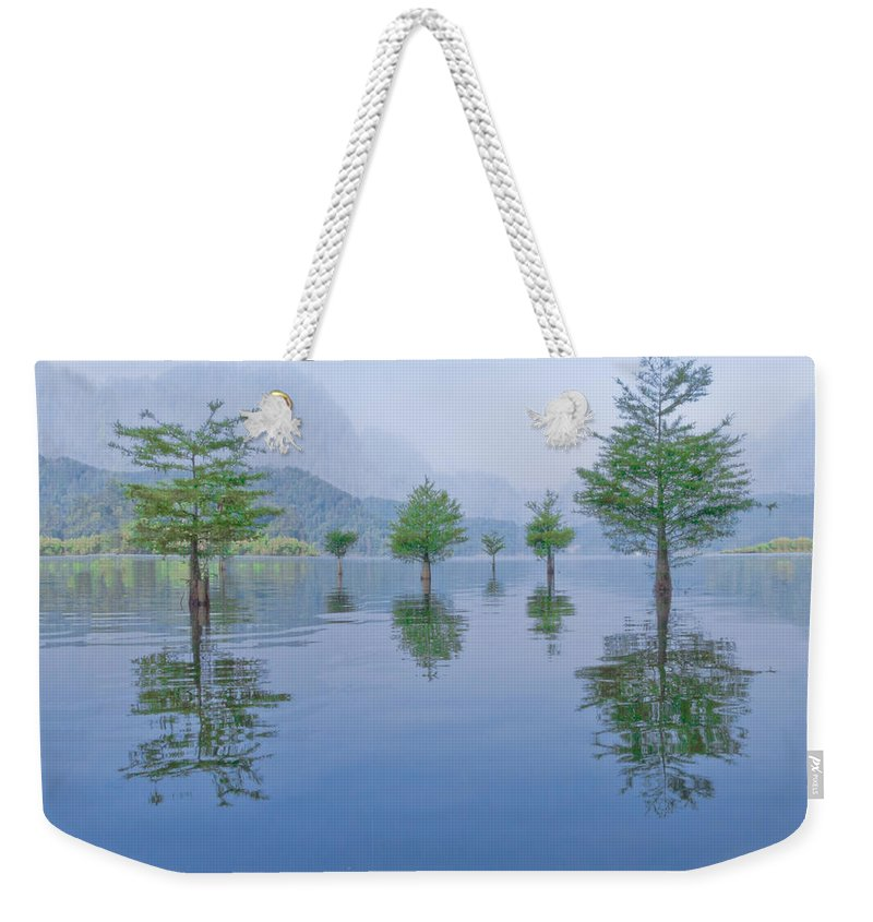 Appalachia Weekender Tote Bag featuring the photograph Spring Hanging Garden by Debra and Dave Vanderlaan